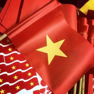 Cung cấp cờ Tổ Quốc – cờ cầm tay cổ vũ bóng đá